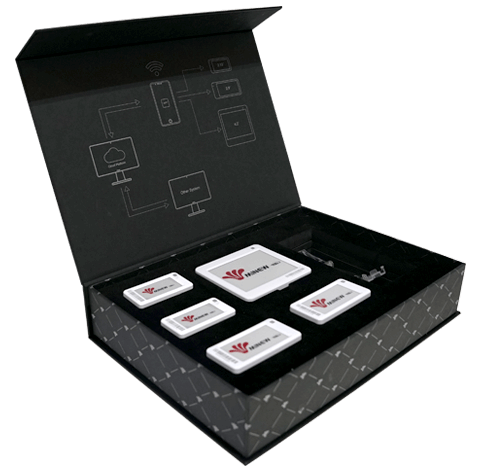 ESL Starter Kit - Solo Version